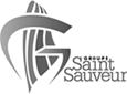Groupe Saint Sauveur copie.png